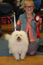 Chieveley Dog Show